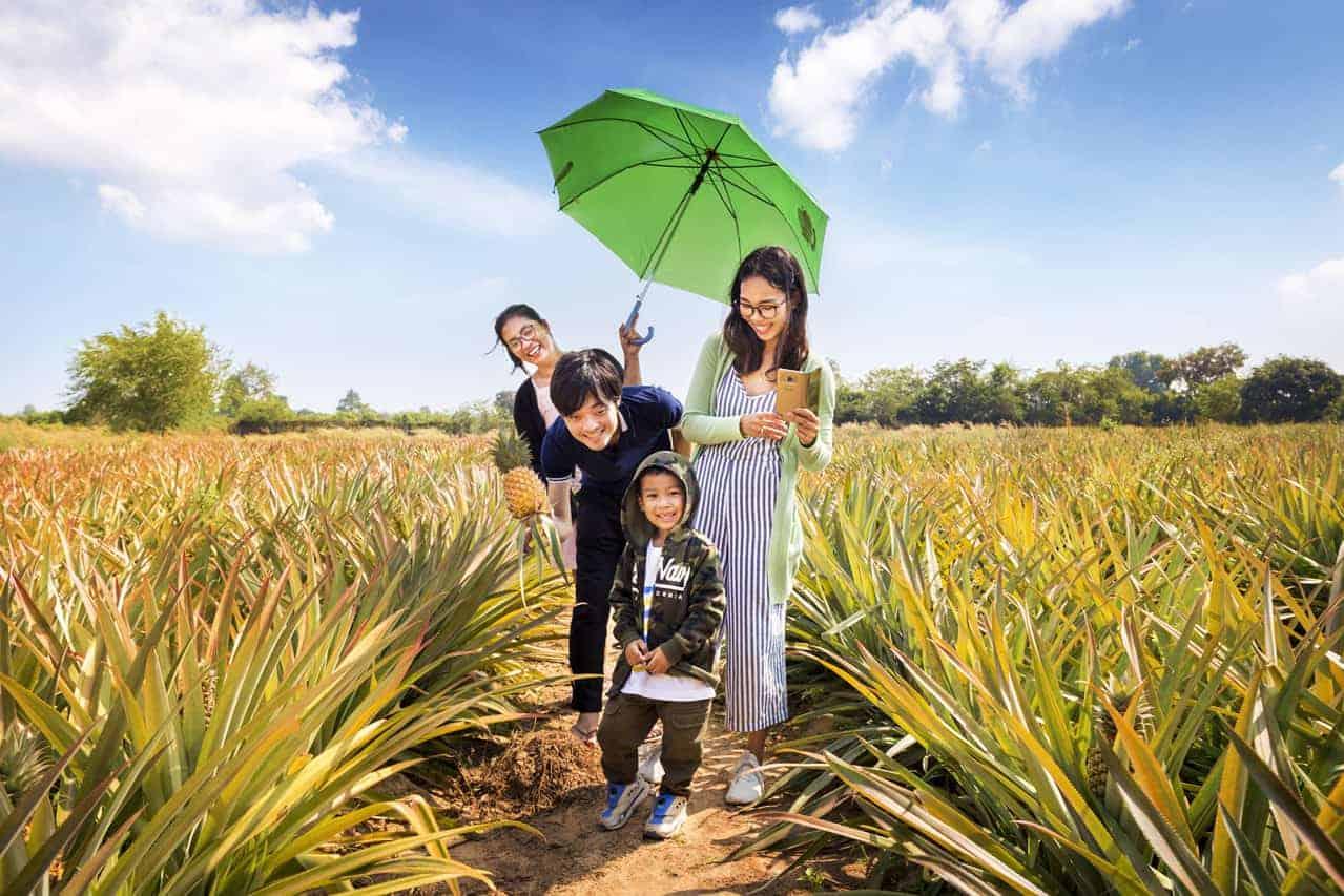 Family Fun at svay-chek