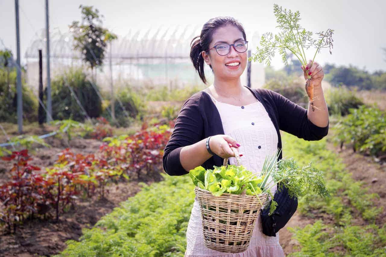 Cambodian Organic Herbs