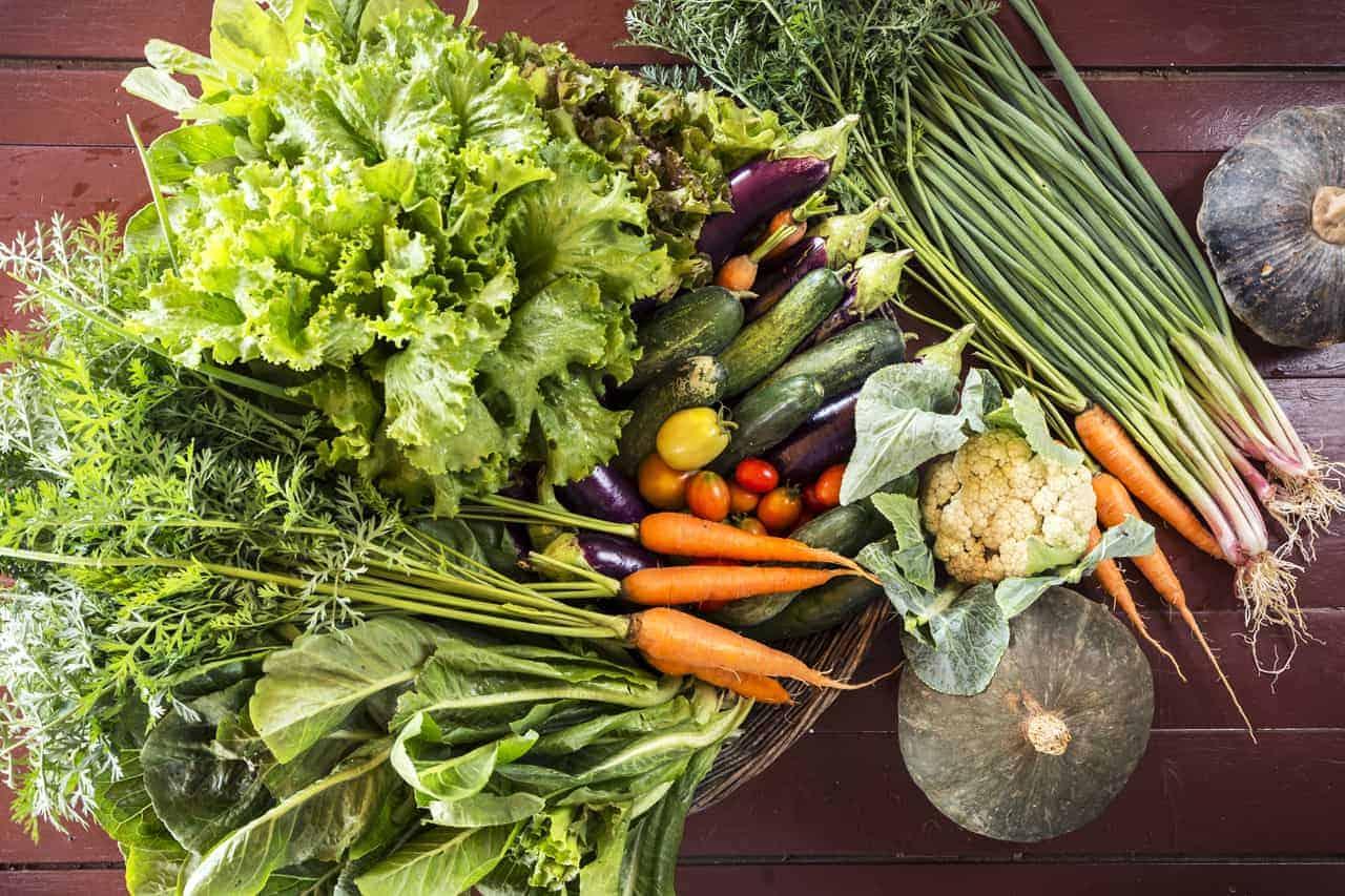 Cambodian Organic Vegetables