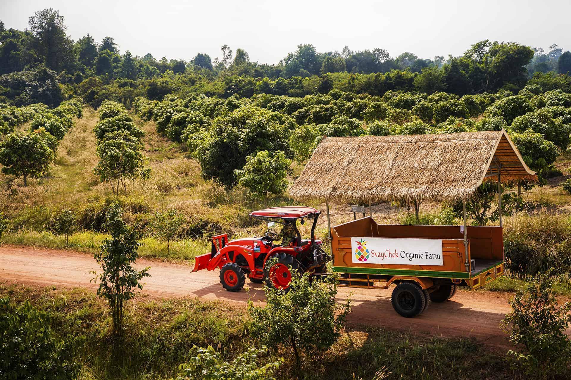 Svay Chek Farm Tractor